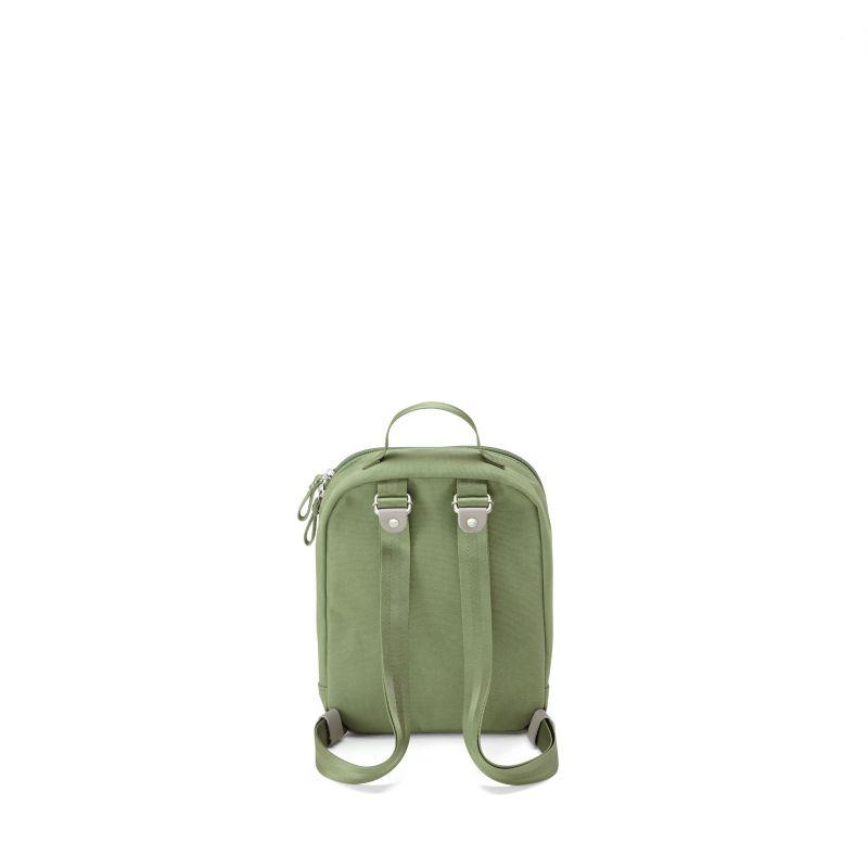 Mini Pack - Organic Moss